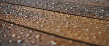 Разрушающие факторы и методы защиты древесины